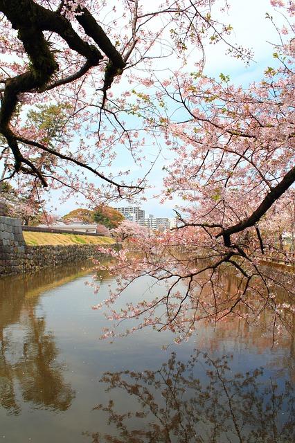 株式会社ジャストライト/福岡/レンタカーで行きたい/九州ドライブスポット/柳川の川下り