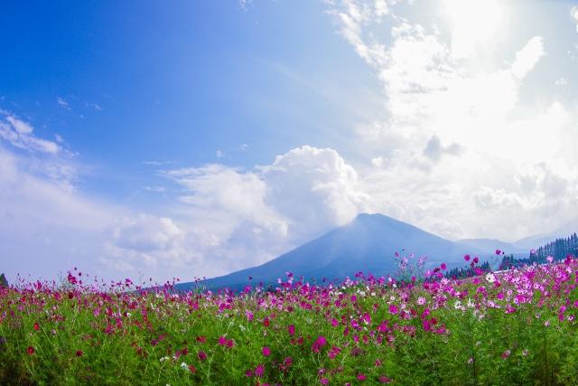株式会社ジャストライト浪岡 智がお送りする宮崎県小林市の「生駒高原」についてのイメージ画像